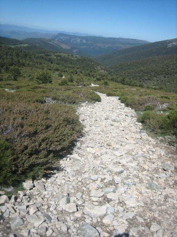descenso a Cotos por loma el Noruego