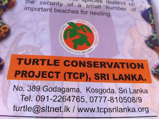 Tortues Sri Lanka