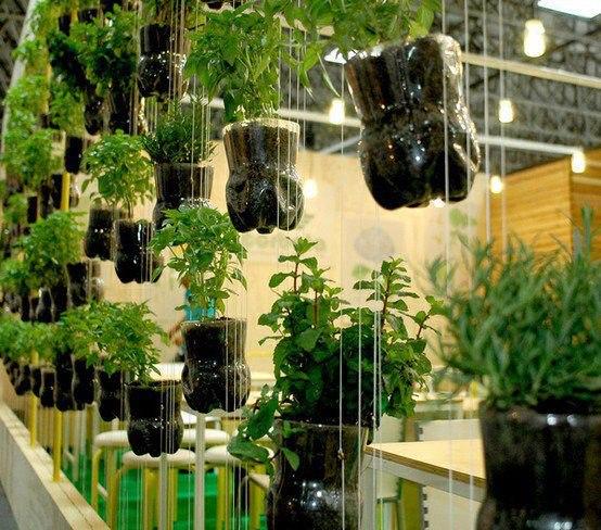 jardim vertical de garrafa pet passo a passo:Prefeitura Municipal de São Vicente Secretaria de Educação