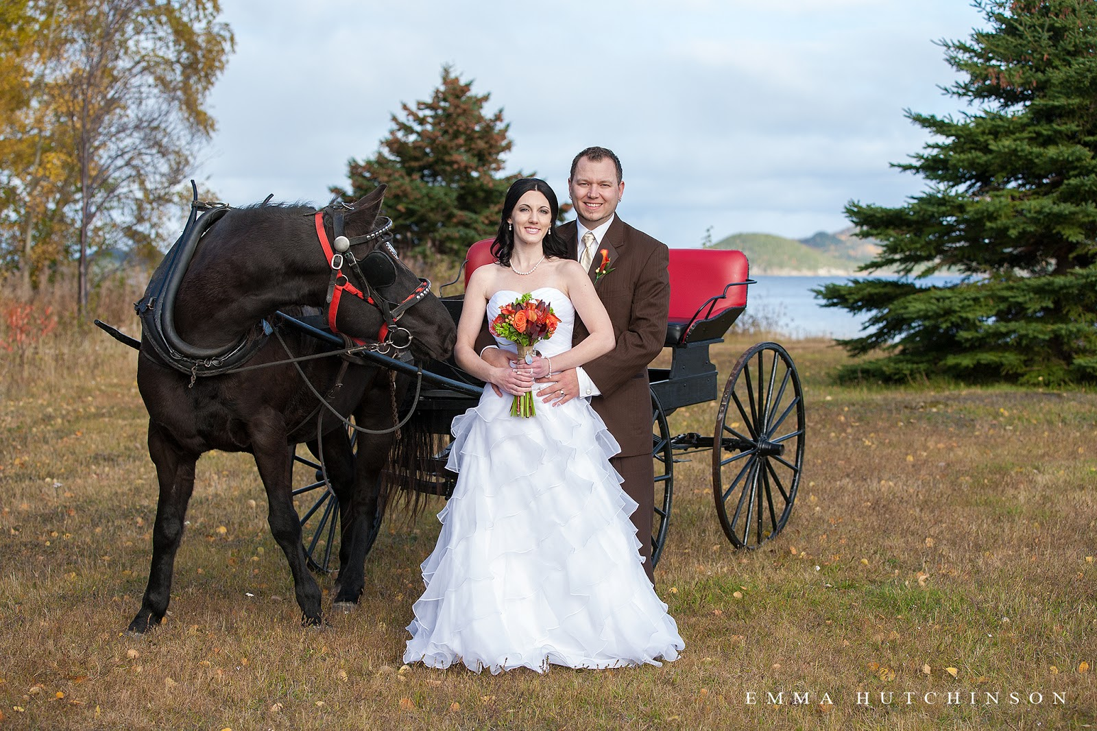Fall wedding in Lewsiporte, Newfouland - Gunner, the horse was interested in the Bride's bouquet