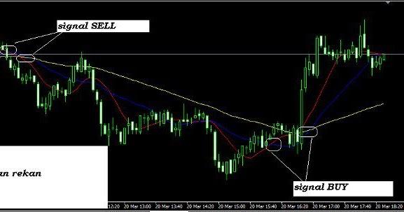 Trader forex indonesia terkaya
