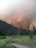 Halstead Fire, Idaho