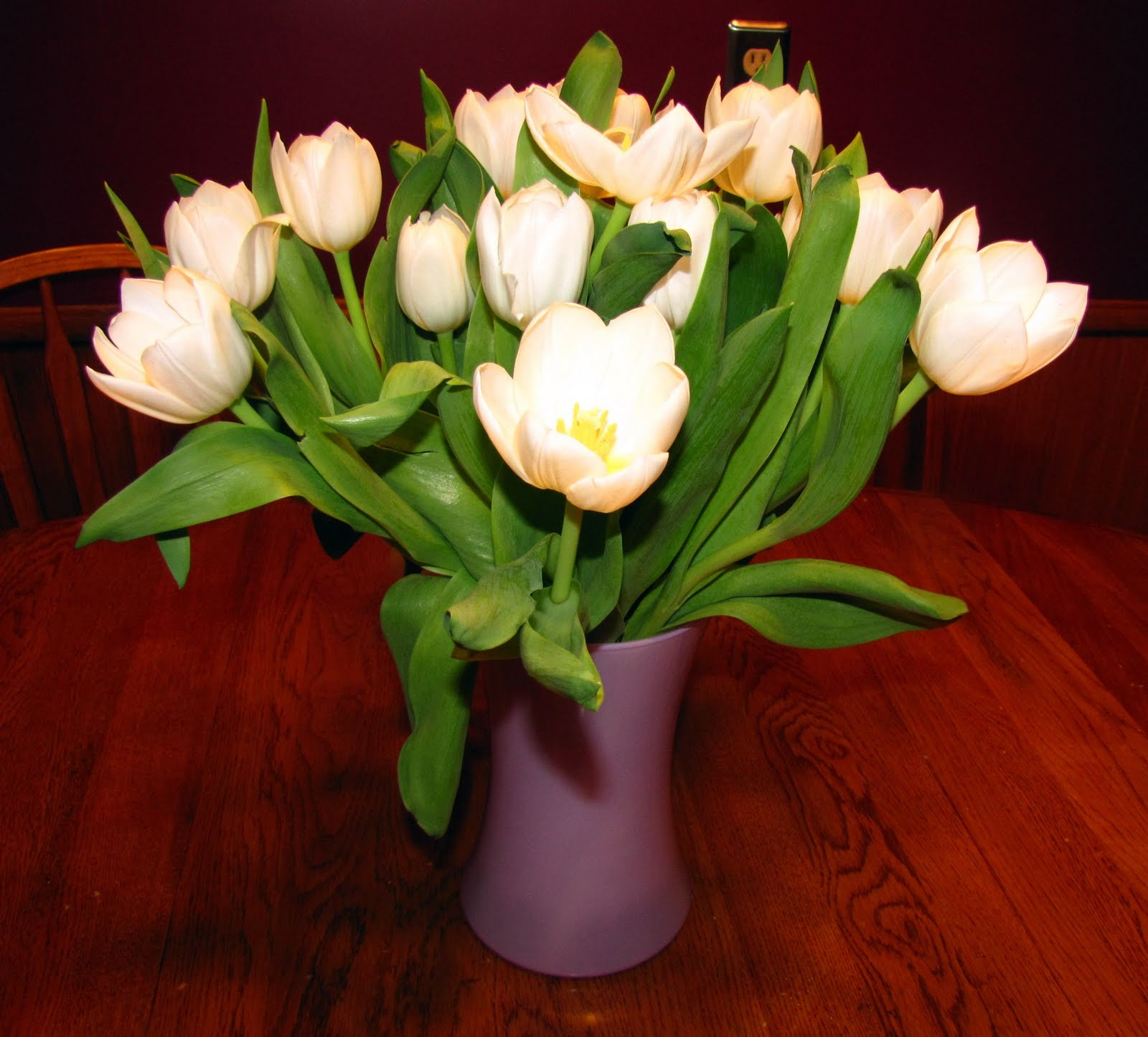 Celebrating mom 8 proflowers review 50 gc giveaway as i said the tulips are sent fresh from the fields and arrive in bud form thus they open to reveal their absolute beauty only after arrival reviewsmspy