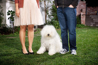 Priscilla Chan and mark with cute puppy