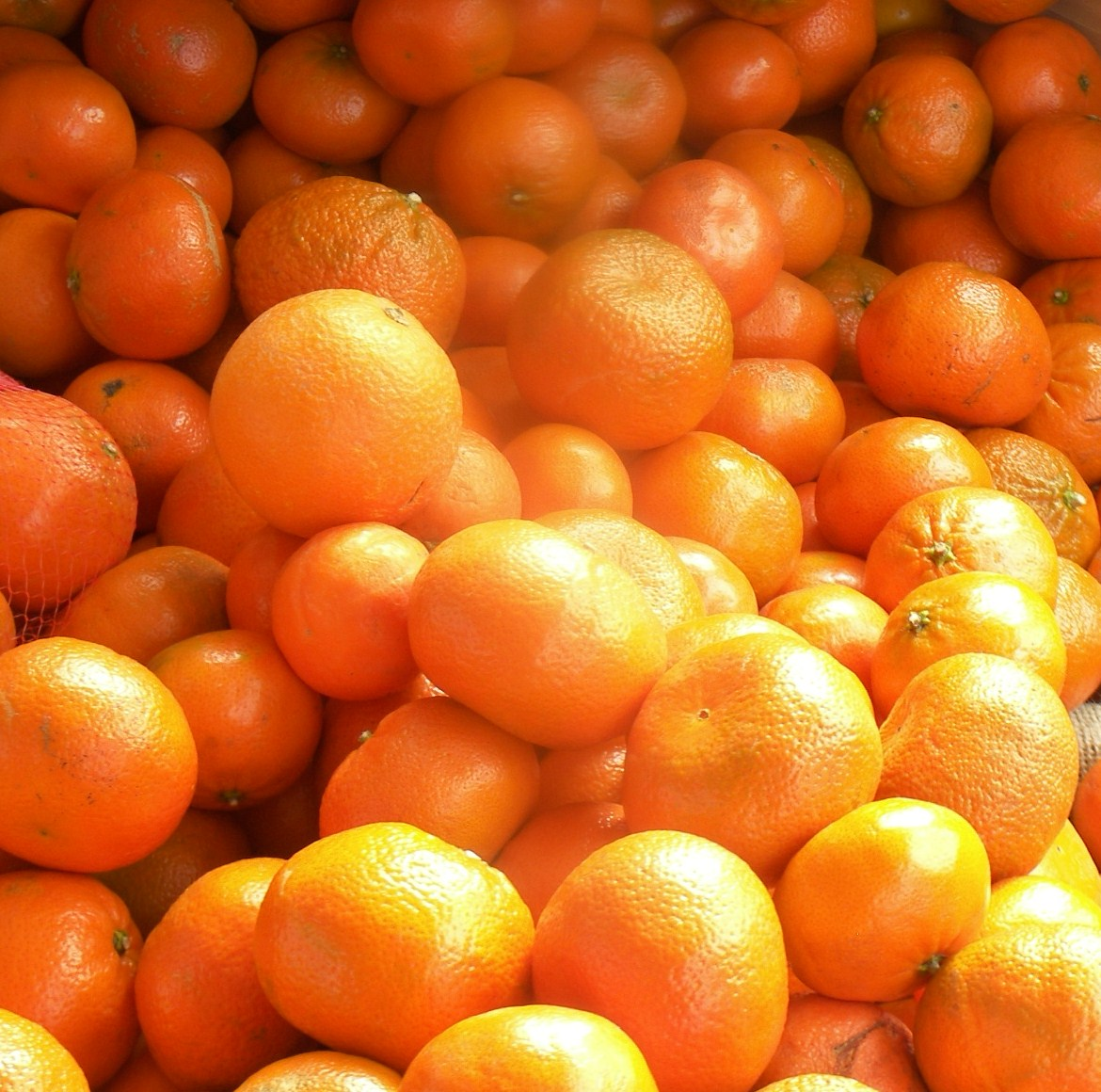 Murcott Tangerines Information, Recipes and Facts