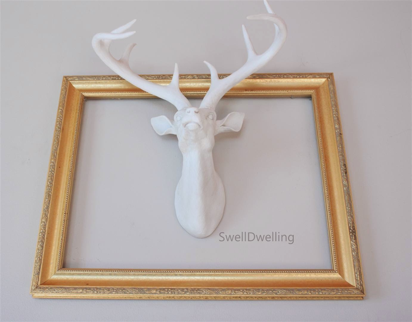 Swell Dwelling: Fauxidermy - White Deer Head
