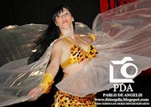 Shows Danza Arabe