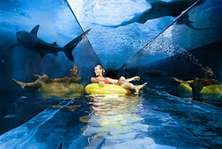 Water Parks in Dubai Atlantis