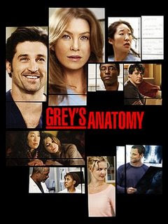 greys anatomy2 Baixar   Greys Anatomy S08E01 8x01 AVI + RMVB Legendado   Free Falling