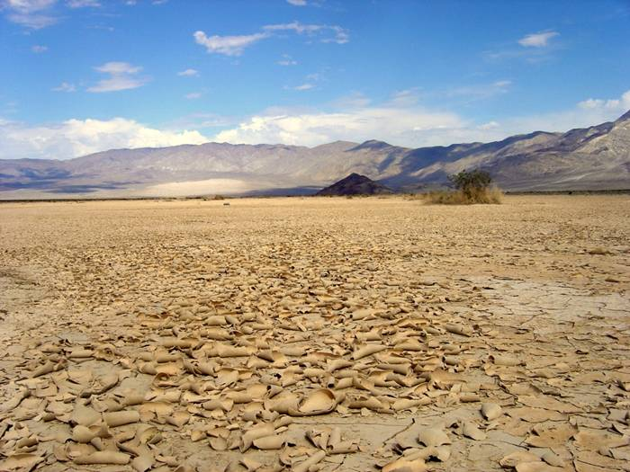 While there has been some debate surrounding which of these places really is the hottest on earth, it appears experts have put down their battle weapons and settled on this California hot spot as the hottest and driest. The highest recorded temperature in Death Valley is 136 Fahrenheit, recorded on July 10, 1913. With an average daily temperature of 118 Fahrenheit, it's no secret where this place gets its name. Interestingly, despite holing the top slot as the hottest place in the world, temperatures often drop below freezing at night, making it even more undesirable, if you ask me.  It is important to keep in mind that this list is strictly comprised of places that have reliable weather stations and observers that can get a temperature read as accurately as possible. There is much discussion of places on Earth that may very well surpass the destinations on our list, such as certain remote areas of the Sahara, the Sonoran, and the Lut.  However, because these climatically harsh deserts do not have an official weather station or appropriate means to record the temperature, we cannot officially include them. However, it has been said temperatures reached 159 Fahrenheit in the Lut Desert in 2005, a shocking 25 degrees higher than the highest temperatures ever recorded at Death Valley.