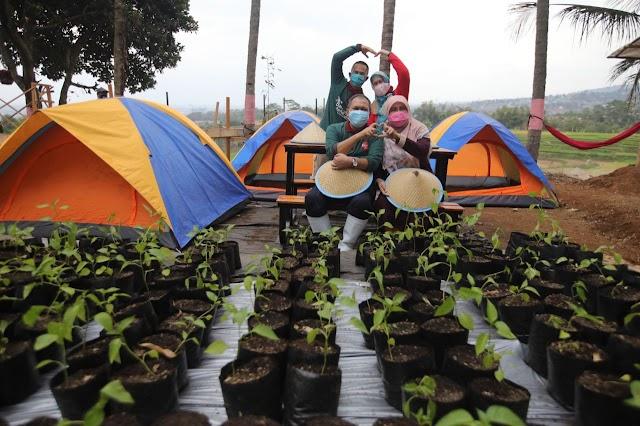 Lahan Terbatas, Pemkot Bandung Kembangkan Integrated Farming