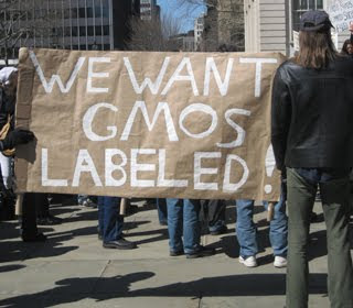 genetically modified food labels don't sit well in US