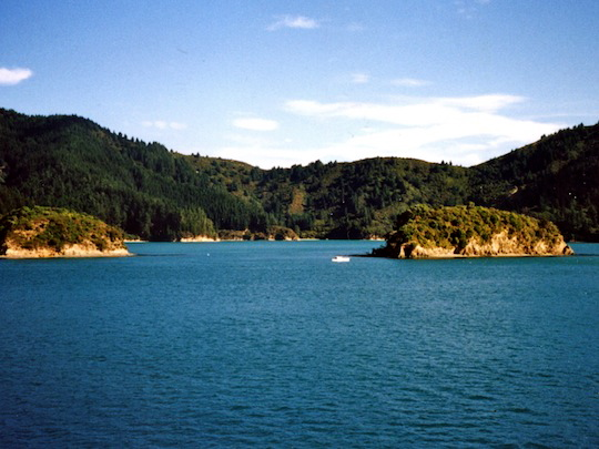 View from InterIslander NZ