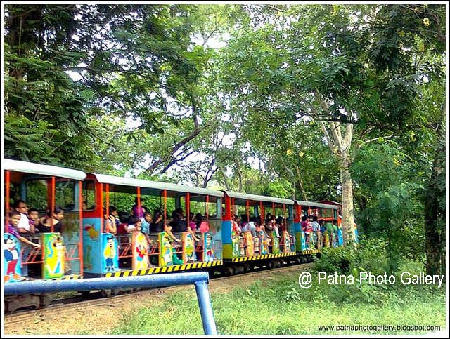 Patna Zoo Toy Train
