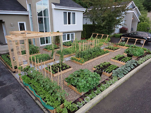Vegetable Garden Design Canadian Take On The Potager With Ideas