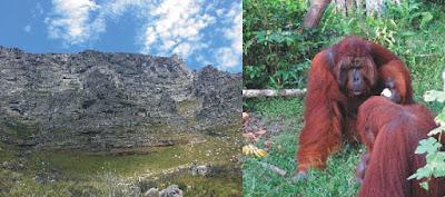 lingkungan biotik dan antar komponen lingkungan Abiotik