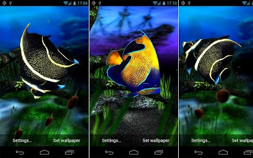 Aquarium have new beautiful backgrounds, plants, fishes, tank