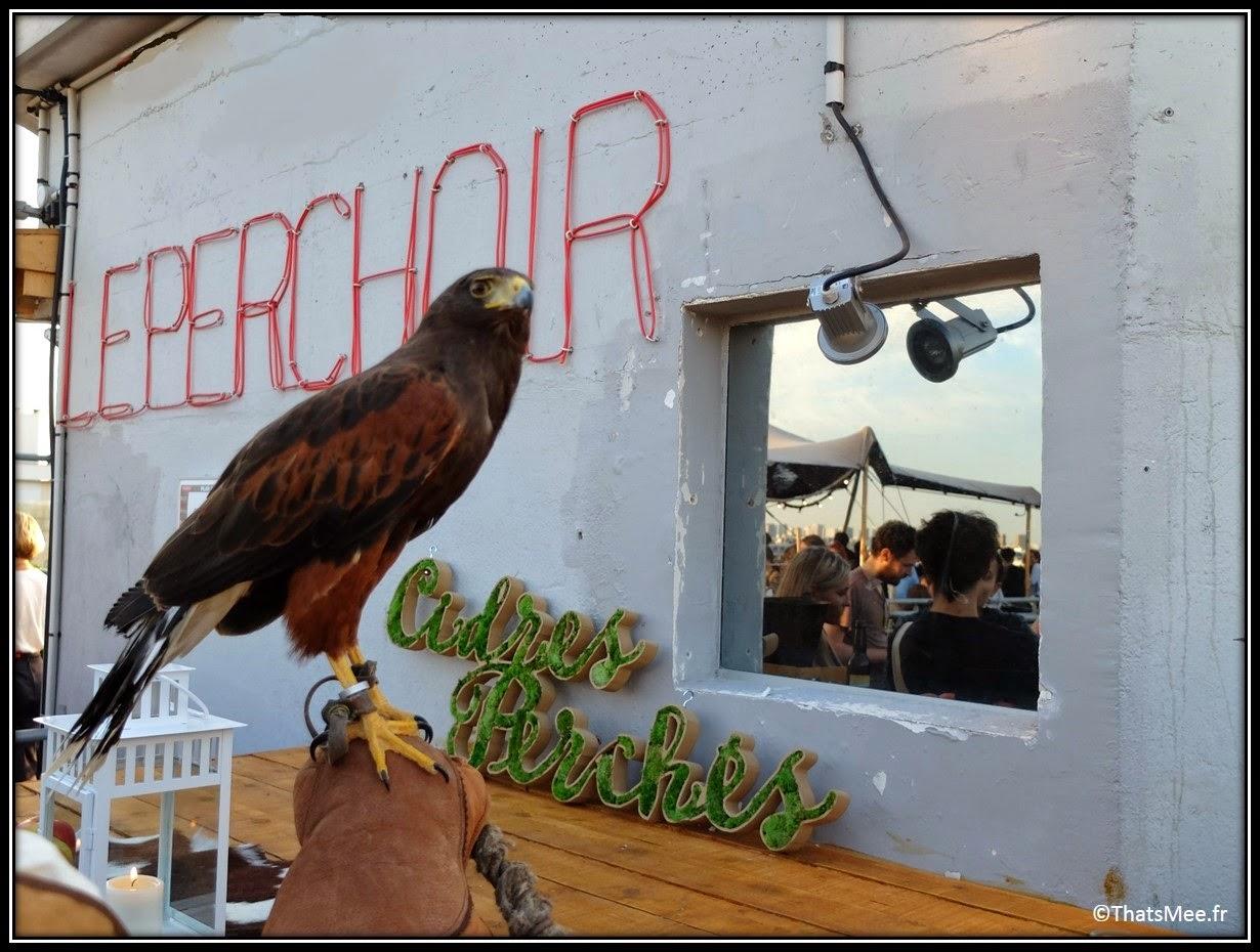 bar perchoir hipster rooftop Paris, Perchoir cidres perchés soirée privee Paris 11eme  aigle vivant