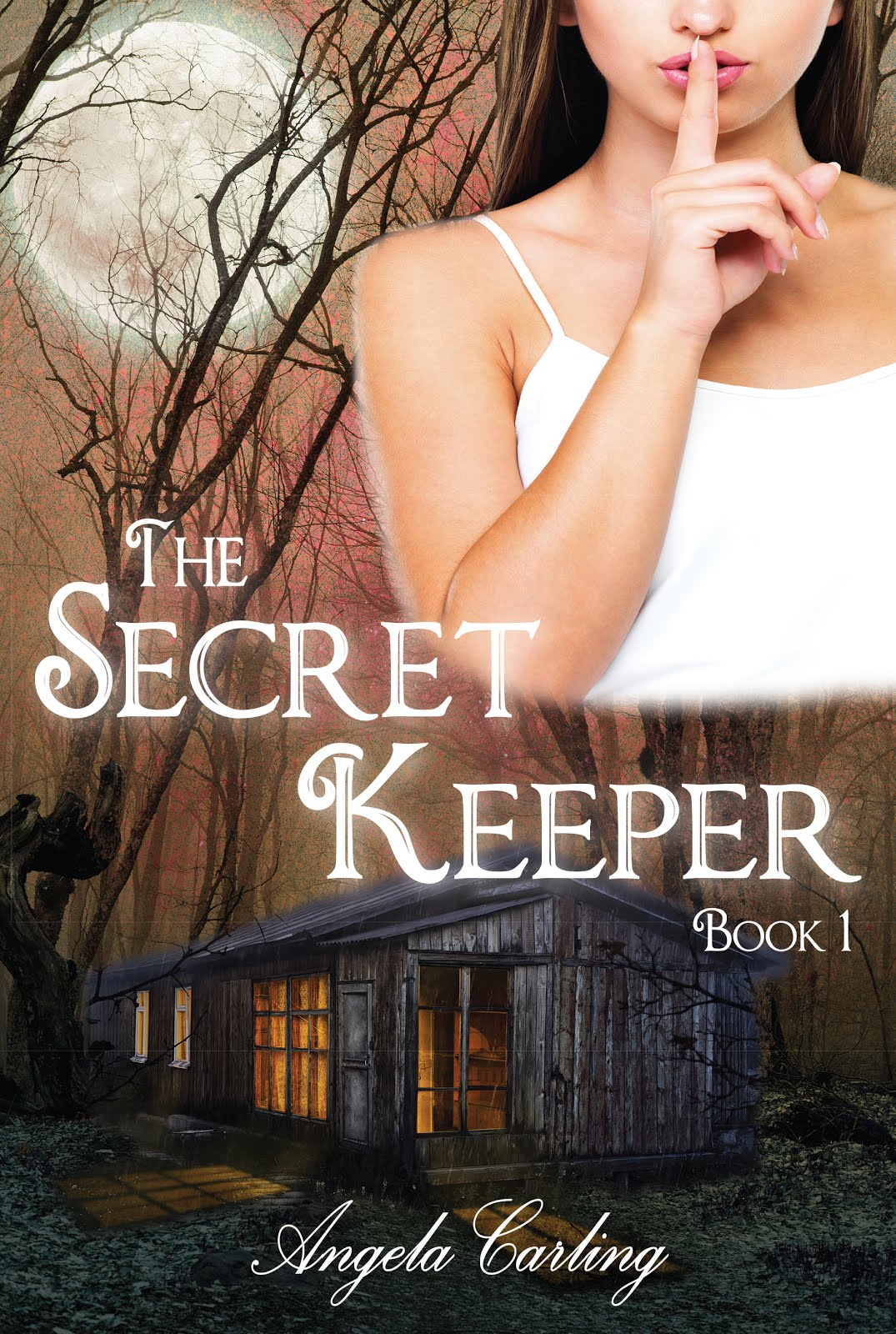 The Secret Keeper Series