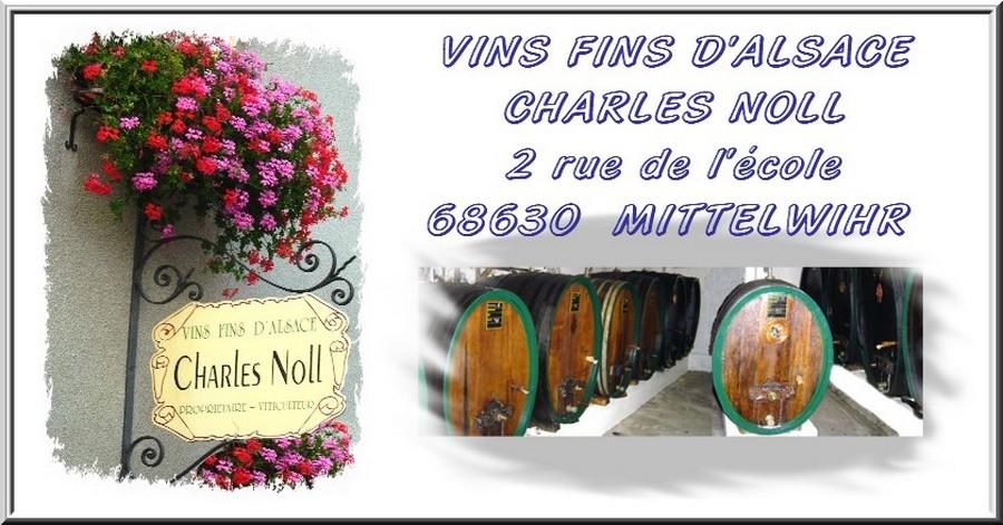 La nature les vignes Le vin un métier une vie une passion