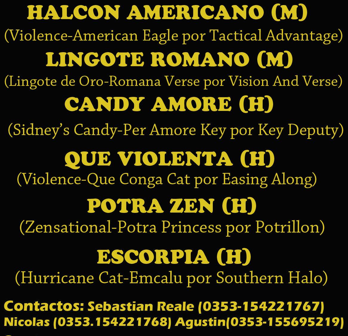 HS EL ARROYO 2