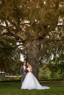 Couple by the copper beech tree at Guisborough Hall