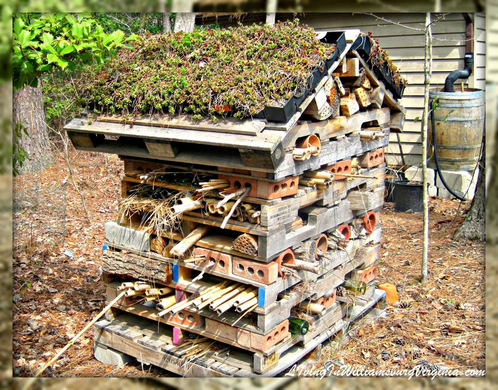 Living In Williamsburg, Virginia   Blogspot