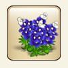 castleville flower gift