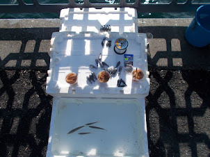 """""""FISH BAIT"""" for sale to  anglers fishing on the historic """"Galata Bridge"""" of Istanbul."""
