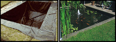 self koi pond construction