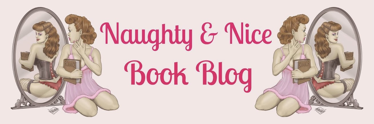 Naughty and Nice Book Blog