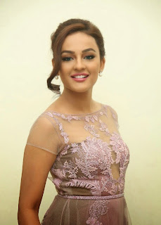 Seerat Kapoor Stills at Tiger Movie Audio Launch 2.jpg