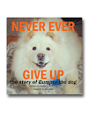 Never Ever Give Up: The Story of Bumper the Dog