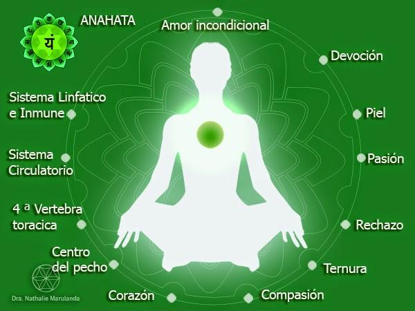 Cuarto chakra: el centro integrador ~ La Flor de la Vida - Medicina ...