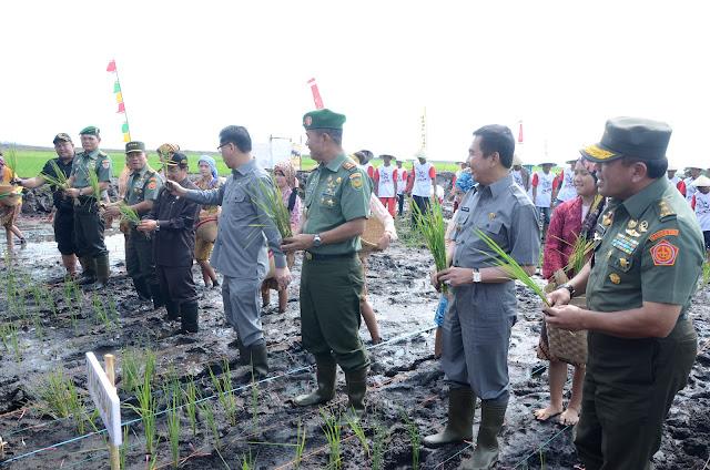 Cetak Sawah Baru di Bima Selesai, Kinerja TNI Patut Diapresiasi