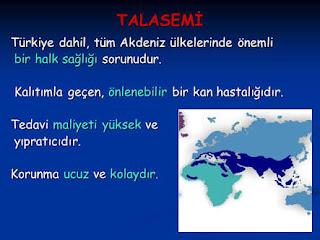 Akdeniz anemisi nedir