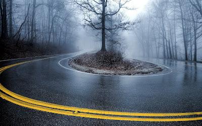 Carretera con curvas en el bosque de otoño