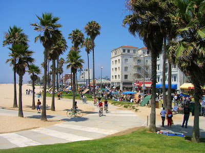 Palm Trees at Venice Beach