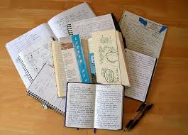nonfiction notebooks buckner aimee