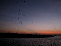http://4.bp.blogspot.com/-2918qC2t2wU/UI9QVZ63iII/AAAAAAAAYRc/5WGFRtbeZP4/s200/Pulau-Kalong.jpg