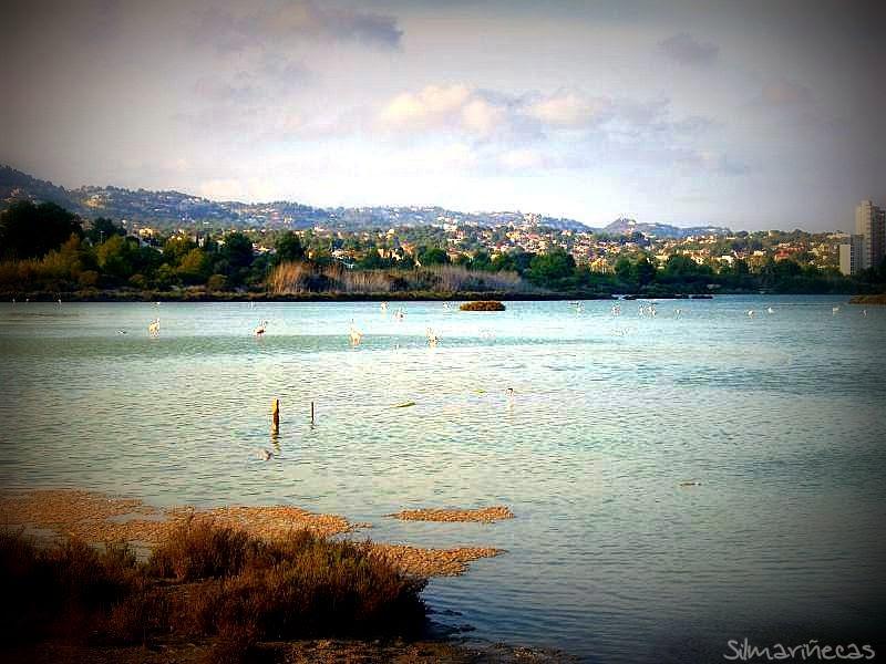 Salinas en Calpe