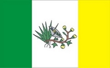 BANDEIRA DO MUNICPIO DE PICU