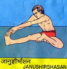 JANU SHIRSH ASANA