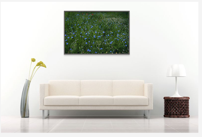 Interior with Art photo print