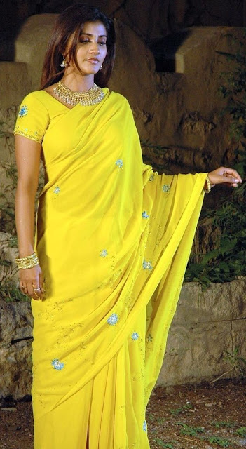 Actress Kausha in Yellow Saree Photos