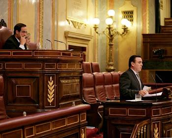 El presidente Bono me da la palabra en el Pleno del Congreos de los Diputados