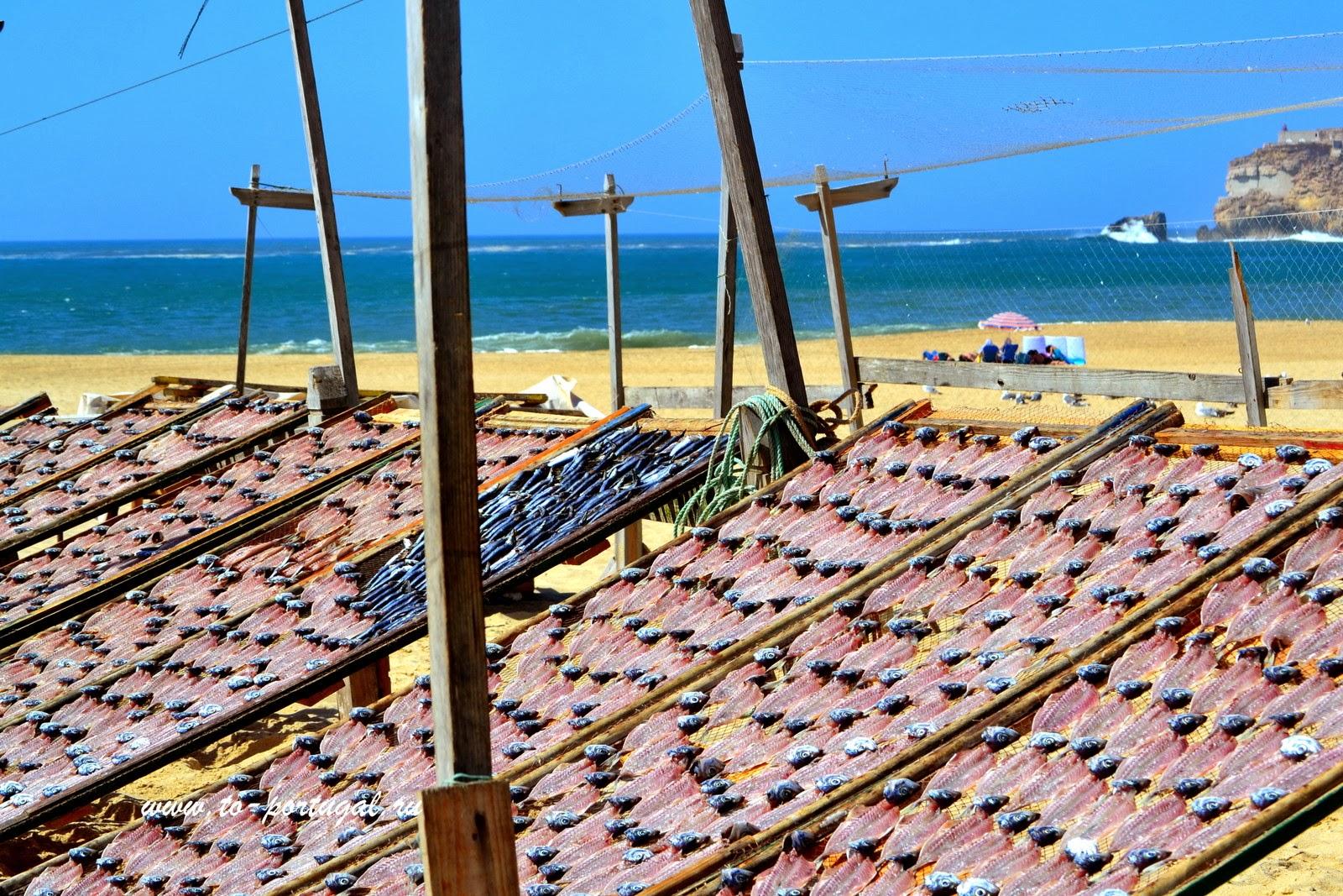 вяленая рыба Португалия Назаре