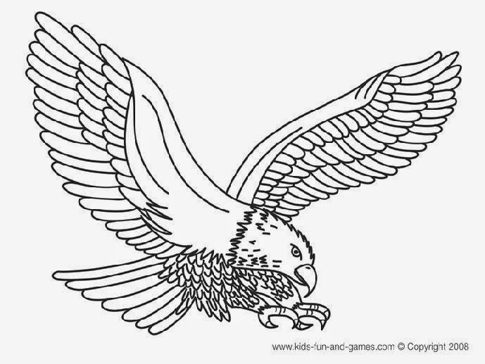 Bald Eagle Coloring Book Page