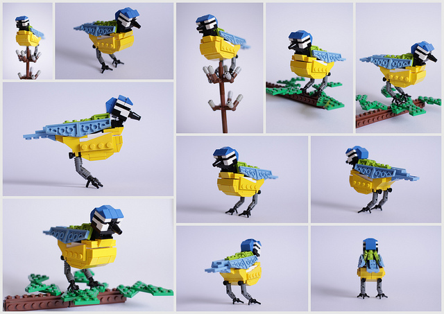 pajaros de Lego. herrerillo. Billy Blue Tit