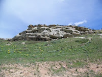 Rock Wren Habitat
